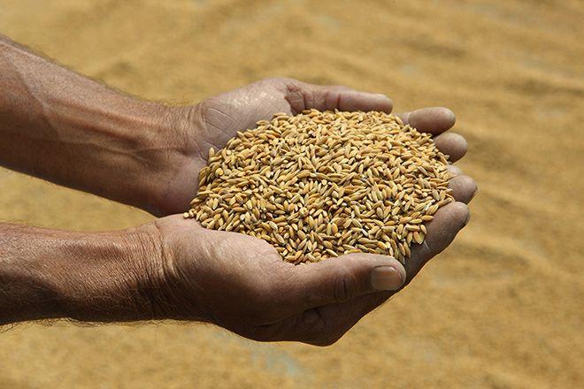 Bharatrath & Krushi Sampada! Empowering Farmer Groups.
